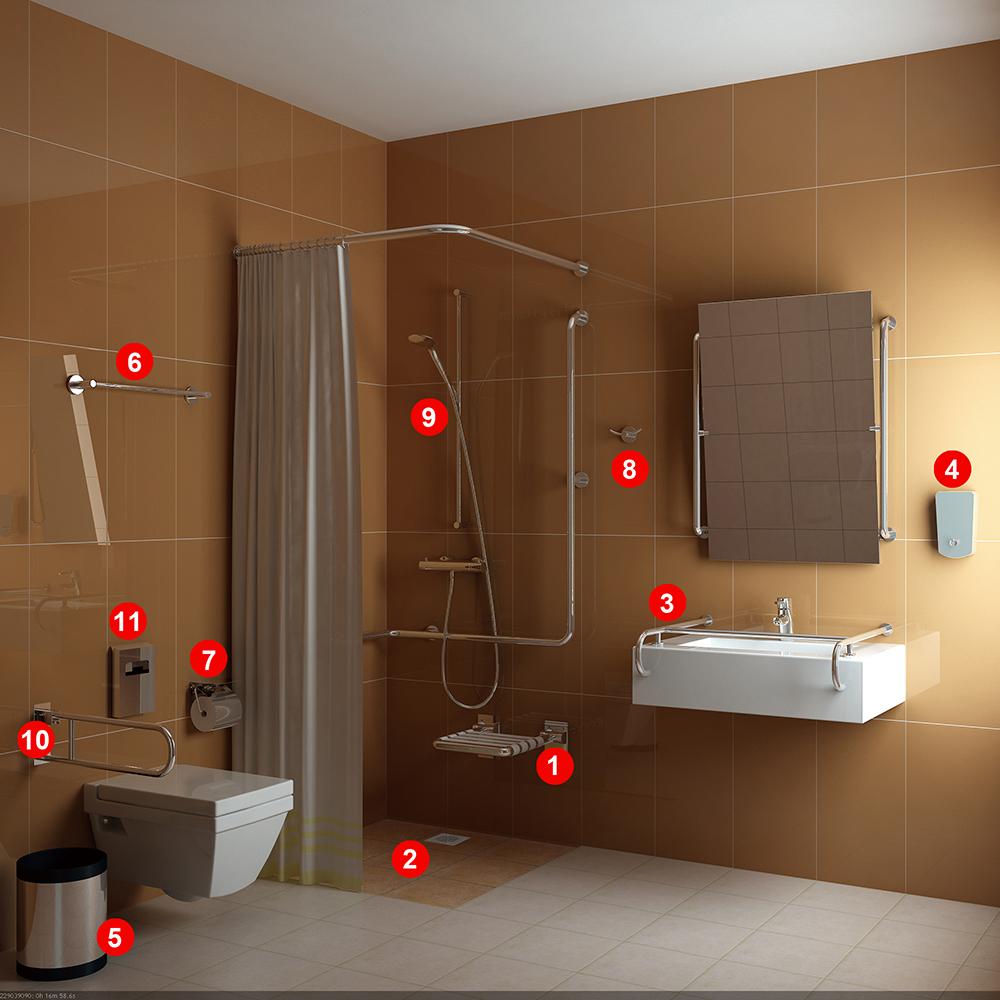 Handicap Toilet Sample Design B